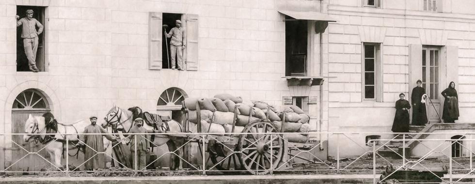 En 1913, le transport des céréales jusqu'à Reguignon par charette